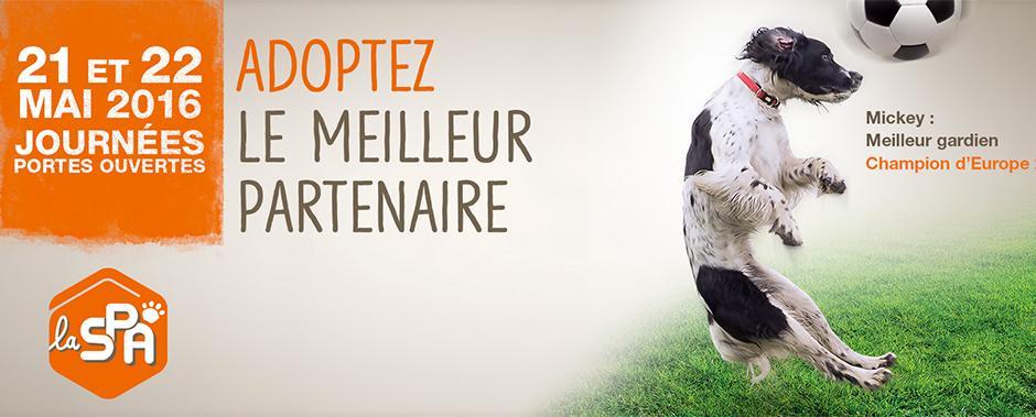 Journ e portes ouvertes spa site officiel de la mairie de mirepoix - Journee portes ouvertes spa ...