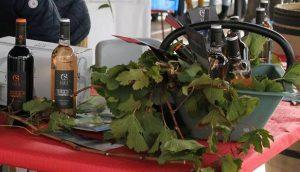 vin-belles-tables-pour-cette-1ere-edition