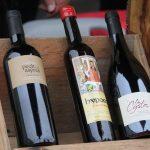 vin-de-bons-crus-a-deguster-moderement