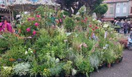40ème anniversaire de la foire à la brocante et aux fleurs
