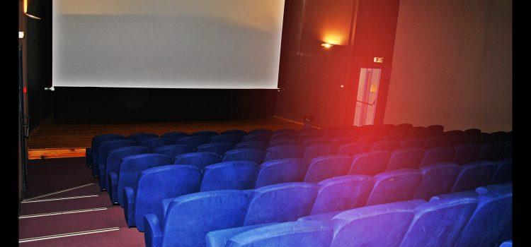 Cinéma municipal : rétrospective 2020