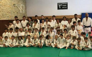 Bilan positif pour le Judo Club