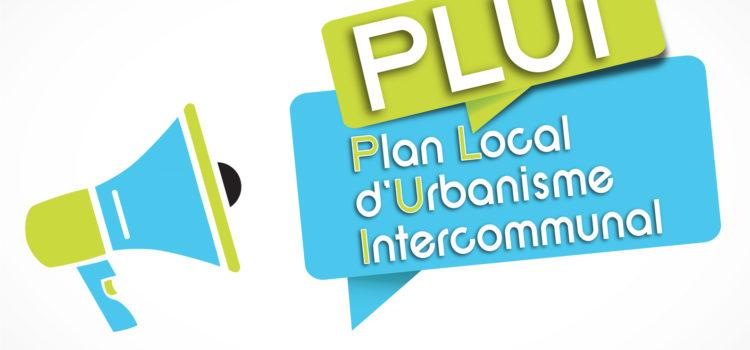 Plan Local d'Urbanisme Intercommunal (P.L.U.I.)