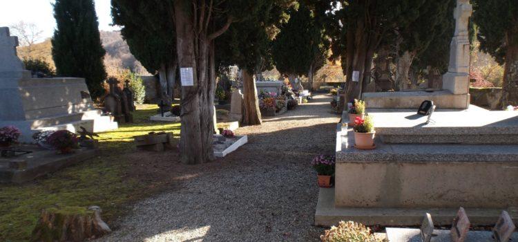 Lancement d'une procédure de réhabilitation du cimetière communal de Saint Aulin répondant aux demandes des administrés