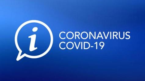 Recommandations du Ministère de l'Intérieur pour l'Organisation des Élections Municipales des 15 et 22 Mars 2020 en situation d'épidémie de COVID-19